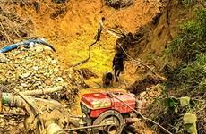 Lâm Đồng: Khai thác vàng trái phép bị xử phạt 150 triệu đồng