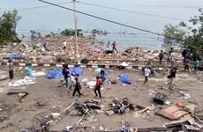 Động đất, sóng thần ở Indonesia: Số người chết tiếp tục tăng