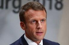 Tổng thống Pháp gặp khó khăn sau khi Bộ trưởng Nội vụ từ chức