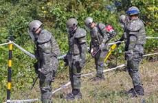 Triều Tiên xử lý mìn được phát hiện tại Khu vực an ninh chung