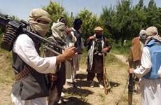 Taliban tuyên bố tấn công an ninh bảo vệ bầu cử quốc hội Afghanistan