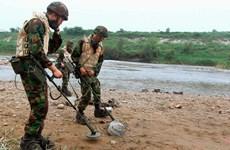 Tư lệnh UNC hoàn toàn ủng hộ các hoạt động rà phá mìn ở DMZ