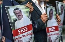 Thổ Nhĩ Kỳ, Saudi Arabia lập đội điều tra chung vụ nhà báo mất tích