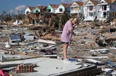 Mỹ: 27 người thiệt mạng, hàng chục người mất tích do bão Michael