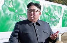 Nhà lãnh đạo Triều Tiên Kim Jong-un có thể thăm Nga trong tháng 11