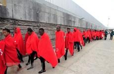 Dòng người di cư từ châu Phi tới Tây Ban Nha đang tăng vọt