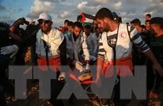 Một người Palestine thiệt mạng tại Dải Gaza do trúng đạn của Israel