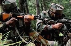 An ninh Ấn Độ tiêu diệt nhiều kẻ khủng bố trong cuộc đọ súng