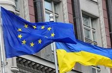 Tướng Ukraine: Kiev mất sự ủng hộ của các nước phương Tây
