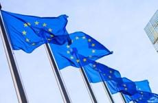 Nhìn lại thế giới 2018: Châu Âu bộn bề trước ngưỡng cửa đổi thay