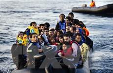 Số người di cư tới châu Âu giảm xuống mức thấp nhất trong 5 năm