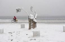 Tuyết rơi dày đặc ở châu Âu khiến nhiều người thương vong, mất tích
