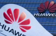 Bloomberg: Những vấn đề quyết định sự thành công của đàm phán Mỹ-Trung