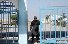 Phái đoàn an ninh cấp cao Ai Cập tới Gaza thảo luận với Hamas