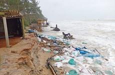 Thừa Thiên-Huế: Khẩn trương xử lý sạt lở bờ biển Vinh Hải