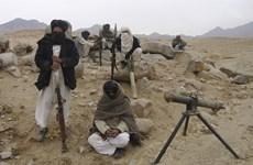 Lực lượng an ninh Afghanistan tiêu diệt thủ lĩnh cấp cao Taliban