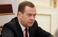 Thủ tướng Nga Medvedev không tham dự Hội nghị an ninh Munich