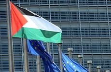 Liên đoàn Arab hối thúc EU công nhận nhà nước Palestine
