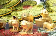 Hội hoa Xuân Kỷ Hợi tại TP Hồ Chí Minh mở cửa từ ngày 31/1