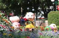 [Photo] Tưng bừng Hội hoa xuân Kỷ Hợi 2019 tại TP.HCM