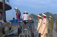 Tăng cường quản lý kinh doanh du lịch trên vịnh Hạ Long dịp Tết