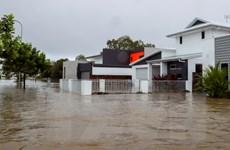 Australia đưa ra cảnh báo mới về ngập lụt do mưa lớn kéo dài