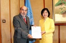Việt Nam tiếp tục đóng góp tích cực hơn vào các hoạt động của FAO