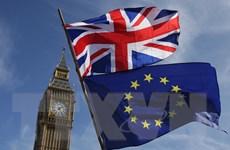 Anh bắt đầu tính tới khả năng rời EU không có thỏa thuận