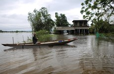 Xây dựng 430 nhà an toàn chống chịu bão, lụt cho người dân