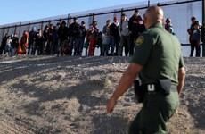 Mỹ: Hàng nghìn người di cư có nguy cơ bị trục xuất do dịch bệnh