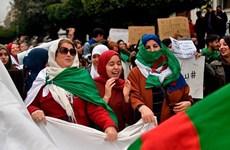 Algeria: FLN kêu gọi đoàn kết giải quyết cuộc khủng hoảng chính trị