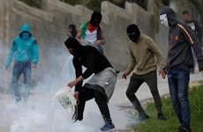 PLO kêu gọi Hamas chấm dứt đàn áp các cuộc biểu tình tại Gaza