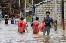 Số người thiệt mạng do lũ lụt và lở đất tại Indonesia gia tăng