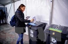 Bầu cử ở Hà Lan: Đảng dân túy nổi lên sau vụ tấn công tại Utrecht