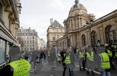"""Cảnh sát Pháp cấm biểu tình """"Áo vàng"""" tại Đại lộ Champs-Elysees"""