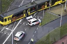 Vụ xả súng tại Hà Lan: Nghi can khẳng định hành động đơn độc