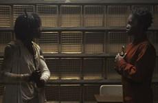 Phim kinh dị Us gây ấn tượng với những thông điệp ẩn dụ về nước Mỹ