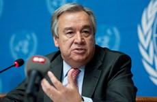 LHQ kêu gọi Colombia ban hành luật về cơ chế tư pháp hòa bình
