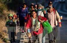 Mexico kiên định với chính sách nhập cư bất chấp sức ép của Mỹ