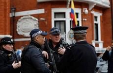 Video nhà sáng lập WikiLeaks Assange bị lôi khỏi sứ quán Ecuador