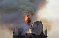 Vụ cháy Nhà thờ Đức Bà Paris: Ngọn tháp của Nhà thờ đổ sập
