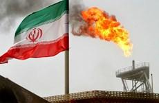 Mỹ chấm dứt quy chế miễn trừ trừng phạt mua dầu thô Iran