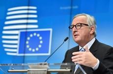 EC cam kết chống lại nạn tin giả trước thềm bầu cử Nghị viện châu Âu