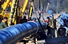 Ba Lan và Đức tạm ngừng việc nhập khẩu dầu thô từ Nga