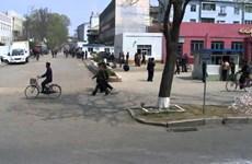 Triều Tiên công khai chuyến thị sát cơ sở kinh tế của tân Thủ tướng