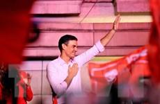 Tây Ban Nha: Đảng PSOE của Thủ tướng Pedro Sanchez chiến thắng