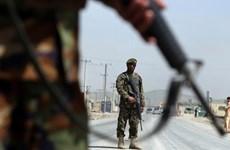 Lực lượng an ninh Afghanistan đẩy mạnh chiến dịch truy quét Taliban