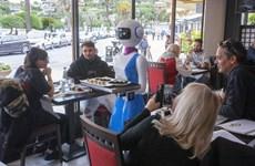 Một nhà hàng Italy sử dụng robot làm nhân viên phục vụ bàn