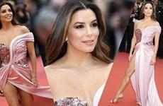 [Video] Các ngôi sao tề tựu trên thảm đỏ Liên hoan phim Cannes