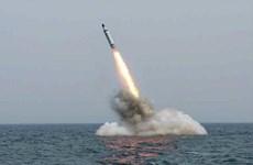 'Các SLBM của Triều Tiên dường như ở giai đoạn phát triển cuối cùng'